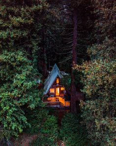 There's a certain piece of mind and coziness that comes with being surrounded by the almighty redwoods.
