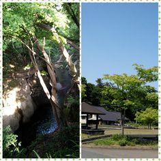 「秋保の新緑と快晴の青空♪ とても良いリフレッシュが出来ました((((*゜▽゜*)))) #東亜和裁#春の研修#新緑#青空」
