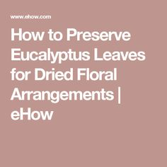 How to Preserve Eucalyptus Leaves for Dried Floral Arrangements   eHow