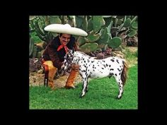 vicente fernandez-caballo golondrino