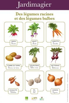 Let's garden at school: make a school garden practice gardening at school French Teaching Resources, Teaching French, Bbc Schools, French Teacher, Plantation, Science And Nature, Permaculture, Garden Planning, Botany