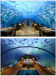 Either on a hut in the middle of the sea or under water hotel at the Maldives.Conrad Maldives Rangali Island Hotel.