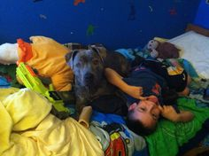 My pitty LOVE Bella with her best brother friend! :)