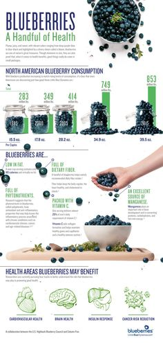 Blueberries by Walter Olivares