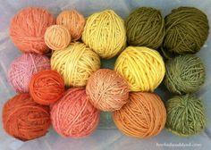 Marvelous Mushroom Dyes, Part 2