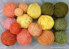 Marvelous Mushroom Dyes, Part 2 | Hooked and Dyed
