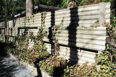 wavy mid century asbestos panel fence. These wavy panels above were a popular material....but since they're made of asbestos, it's a no-no today! Design below by SCLA uses Cor-Ten steel, a popular choice for contemporary garden design, in this proposed 5' ht. fence/retaining wall with sedums to grow through some of the slotted cut-outs.