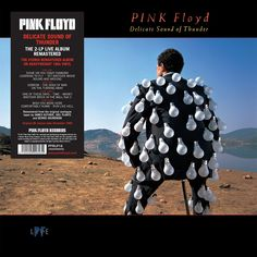 Delicate Sound Of Thunder [Vinyl LP] - Pink Floyd