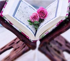 Learn Quran Academy provide the Quran learning services at home. Our mission to teach Quran with proper Tajweed and Tafseer to worldwide Muslim community. Quran Wallpaper, Cute Wallpaper Backgrounds, Cute Wallpapers, Muslim Images, Quran Karim, Quran Book, Best Islamic Quotes, Online Quran, Allah Calligraphy