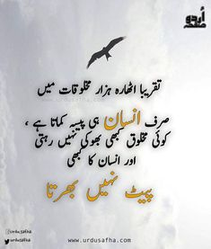 Such magar jine I liye pesa bhi zurury he 1 tarikh khushiya lati he or 29 31 gum Quran Quotes Love, Poetry Quotes In Urdu, Muslim Love Quotes, Urdu Poetry Romantic, Ali Quotes, Love Poetry Urdu, Islamic Love Quotes, Islamic Inspirational Quotes, Urdu Quotes