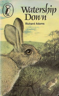 Both dramatic, scary, and charming, this is a very frank exploration of life as a wild rabbit in the English countryside.