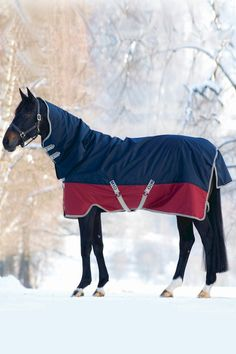 Country and Stable of Olney Limited - Mio Turnout Rug Heavy Weight, £77.95 (http://www.countryandstable.co.uk/mio-turnout-rug-heavy-weight/)