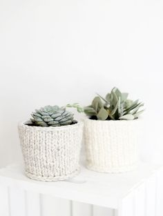 "DIY Knit Planter Cover @themerrythought - what an adorable way to ""cozy up"" indoor plants for winter."
