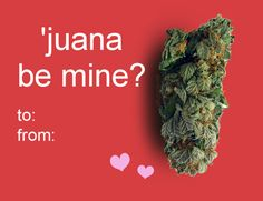 """Juana, the perfect gift for your sweetheart! Another great gift is a $2.99 e-book on medical marijuana: MARIJUANA - Guide to Buying, Growing, Harvesting, and Making Medical Marijuana Oil and Delicious Candies to Treat Pain and Ailments by Mary Bendis, Second Edition. This book has great recipes for easy marijuana oil, delicious Cannabis Chocolates, and tasty Dragon Teeth Mints.  www.muzzymemo.com"