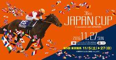 平成28年第5回東京競馬開催