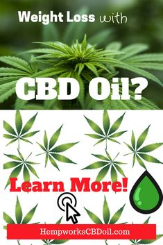 Weight Loss with CBD oil? Purest form of CBD oil - reap the benefits of this super food. Reduce Appetite, Weight Loss Success Stories, Holistic Wellness, Boost Metabolism, Healthier You, Cancer Treatment, Healthy Living Tips, Superfoods, Pain Relief