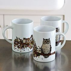 Wow, Owl Mugs, Love to drink some hot chocolate outa these. – Autumn Branch on westelm.com