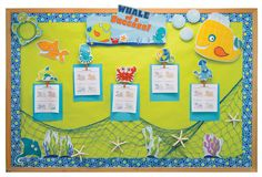 Accent themed bulletin board with extra novelties like the seashells and netting…