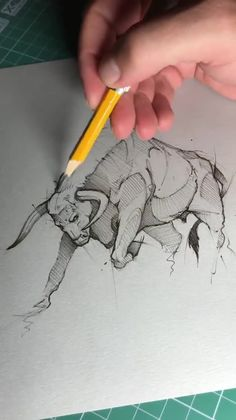 Psdelux is a pencil sketch artist based in Tatabánya, Hungary. He usually draws animal sketches. Psdelux also makes digital drawings. Pencil Drawings Of Animals, Animal Sketches, Molduras Vintage, Bull Tattoos, Art Drawings Sketches Simple, Art Sketchbook, Ink Art, Origami Animals, Artist