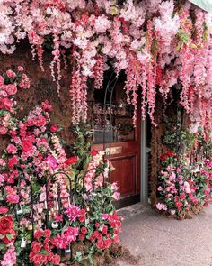 Wanderforawhile Cosy Streets In 2019 Decor Elle Decor Pink Flowers, Beautiful Flowers, Beautiful Places, Flower Aesthetic, Elle Decor, My Flower, Flower Tree, Decor Interior Design, Planting Flowers