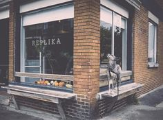 Need a calm, focused space to work? What you need is ❗Café Replika❗ in Rachel St. Discover this and many more coffee shops with Crema app !