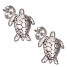 Sterling Silver Mini Sea Turtle Earrings On Stainless Steel Posts And Nuts Sea Turtle Jewelry, Turtle Earrings, Sea Turtle Gifts, Jewelry Gifts, Jewelry Box, Jewlery, Sterling Silver Earrings, Silver Jewelry, Jewelry Stores