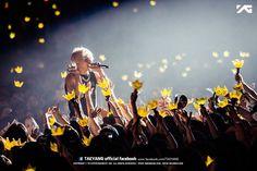 BIGBANG TAEYANG SOL