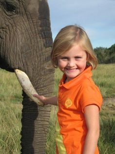 Under poaching pressure, elephants are evolving to lose their tusks-- so sad Elephant Sanctuary, African Elephant, Tooth Fairy, Elephants, South Africa, Sad, Women, Style, Swag
