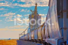 """Agricultural Freight Train and Grain Elevator royalty-free stock photo 5760 × 3840 px 19.2 × 12.8"""" @ 300.0 dpi Stock photo ID:79604767 $33"""