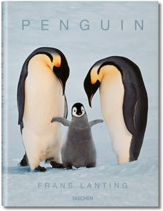 Frans Lanting: Penguin