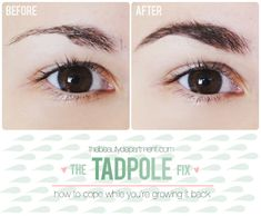 How to Disguise Over-Plucked Brows (or just fine ones...)