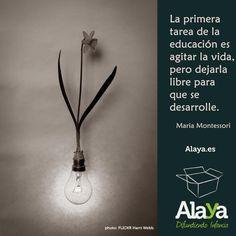 """""""La primera tarea de la #educación es agitar la #vida, pero dejarla #libre para que se desarrolle"""" #Montessori"""