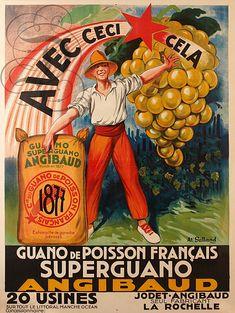 Guano de poisson français