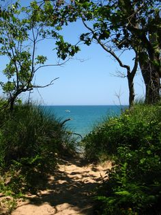 Indiana Dunes state park...want to go here this summer!!