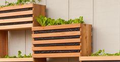 14 Innovative Garden Edging Ideas on The Cheap