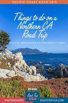 Plan your Northern California road trip with these top ten bucket list experiences from San Francisco to Tahoe to the redwoods.