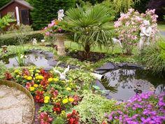 conseil jardinage , permaculture et électro-culture