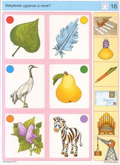 Logico --Mi tartozik össze - Katus Csepeli - Picasa Webalbumok