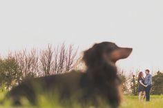 cute engagement shoot with dog ideas http://www.samandlouise.co.uk