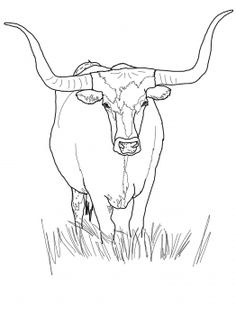44 best longhorn quilts images cow cow painting cow wall art Steer Horns for Cars texas longhorn cattle coloring page from longhorn category select from 30722 printable crafts of cartoons nature animals bible and many more