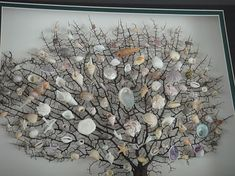 seashell tree: