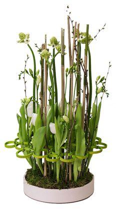 Schaal met Tulpen en Ringen