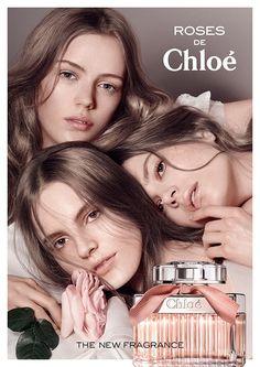 Chloé de Roses Fragrance Campaign Starring Caroline Brasch Nielsen, Tilda Lindstam + Esther Heech