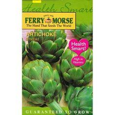 recipe: bush bean seeds home depot [19]