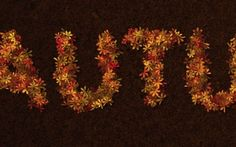 Colorful Autumn-Inspired Text Effect