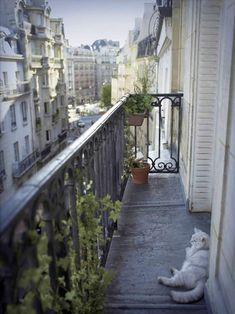 What a lucky cat is this! Cat resting on his Paris balcony Places To Travel, Places To See, Rio Sena, Oh Paris, My Little Paris, Belle Villa, Le Havre, Paris Apartments, Beautiful Places