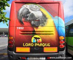 Rotulación Loro Parque. Contacta con nosotros en el 922 646 824 o vía email a mailto:comercial@... #publiservic #rotulacion #autobus Parrot, Vehicles, Design, Transportation, Parks, Angel, Parrot Bird, Car