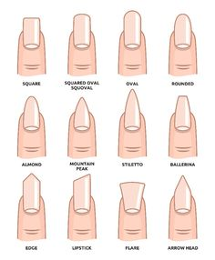 Illustration of Different nail shapes Fingernails fashion Trends vector art clipart and stock vectors. Image The post Illustration of Different nail shapes Fingernails fashion Trends vector art c appeared first on nageldesign. Aycrlic Nails, Cute Nails, Pretty Nails, Nail Nail, Stiletto Nails, Best Acrylic Nails, Summer Acrylic Nails, Spring Nails, Squoval Acrylic Nails