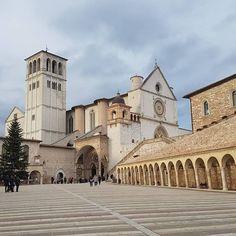 #assisiitaly #igersitalia #ig_italia #pretttlittleitaly #church #art #sanfrancesco #visitumbria #travel #monument #italiastyle