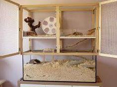naturnahe hamstergehege eckschrank f r chinesin luna hamsterheime pinterest chinesisch. Black Bedroom Furniture Sets. Home Design Ideas